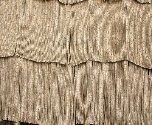 thatched roofing roof