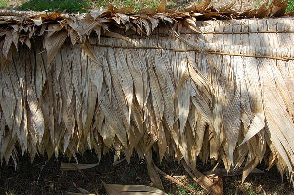 roofing roof palm leaves
