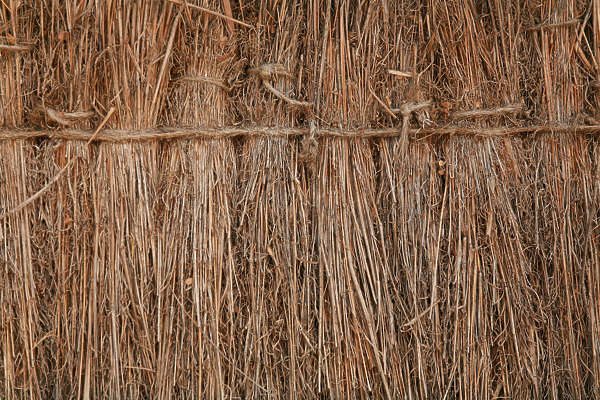 Thatched0056 Free Background Texture Thatched Roof