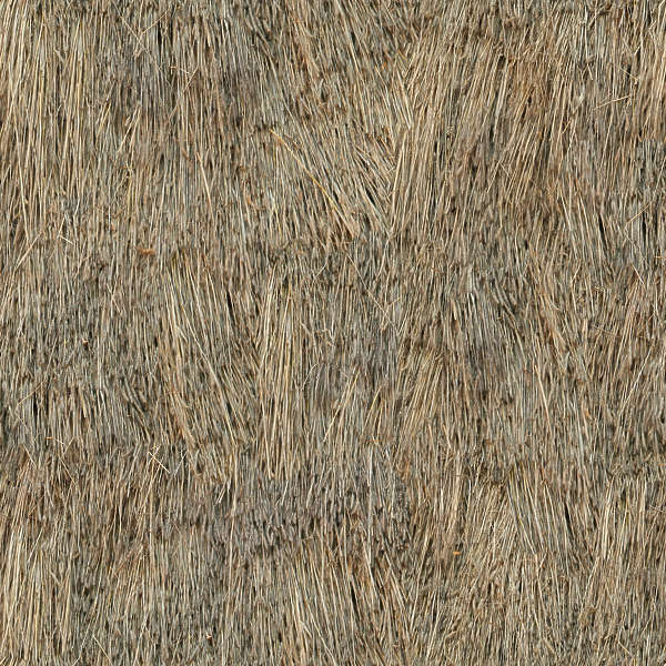 Thatched0037 Free Background Texture Roof Roofing