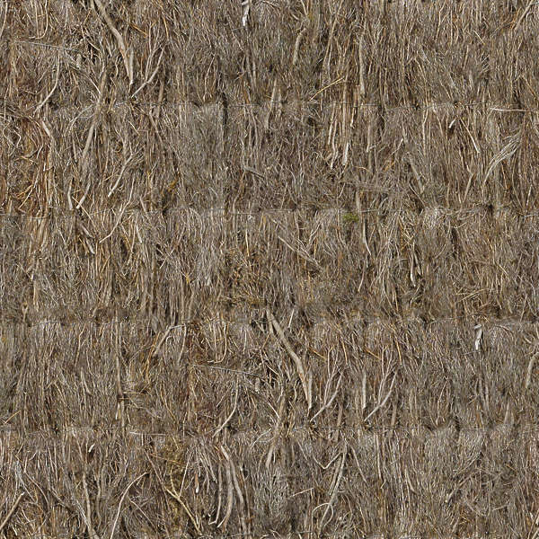 Thatched0024 Free Background Texture Thatched Roof