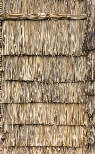 Thatched0065 Free Background Texture thatched thatch