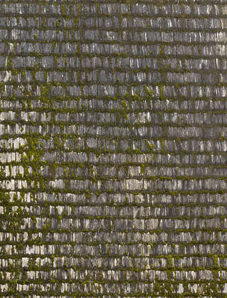 roof roofing rooftiles wood tiles shingles medieval old moss mossy