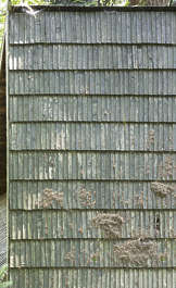 rooftiles wooden
