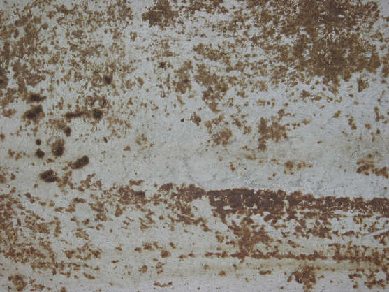 rust heavy paint spots