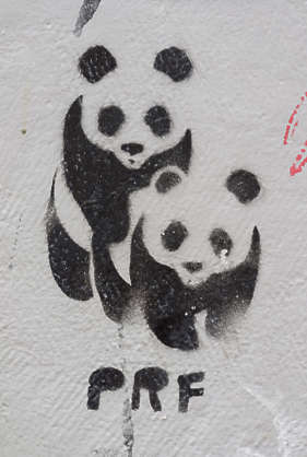 germany graffiti tag panda