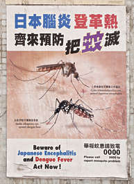 hong kong poster mosquito insect danger