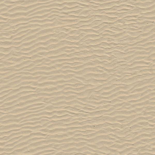 Soilbeach0087 Free Background Texture Sand Beach