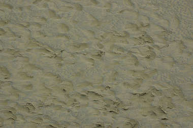 sand earth ground beach footsteps mud