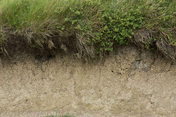 soil cliff UK sand earth