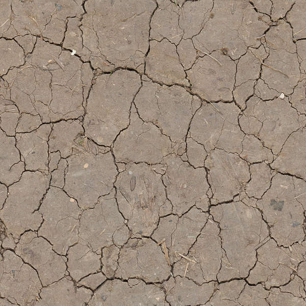 Soilcracked0158 Free Background Texture Earth Soil