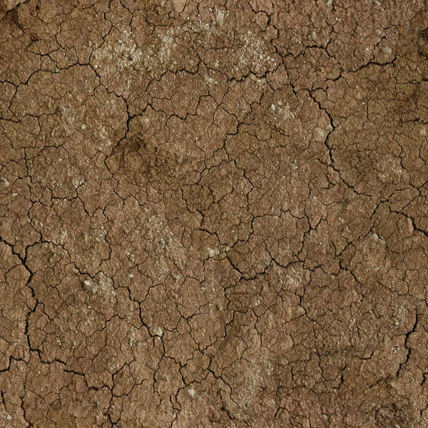 Soilcracked0066 free background texture sand earth for Soil texture