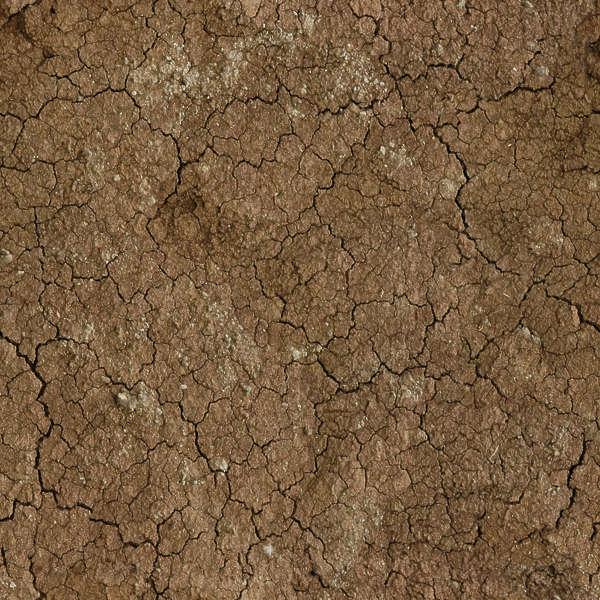 Mud Cake Texture