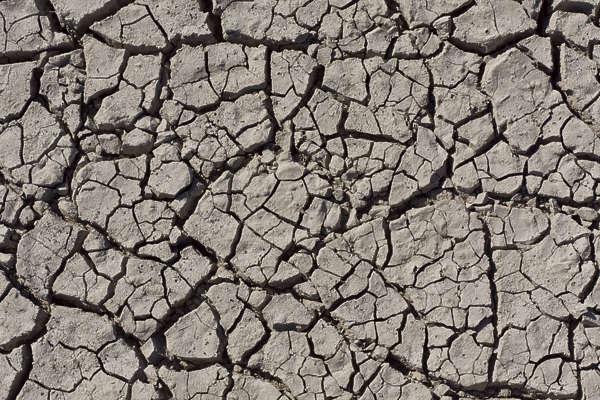 Soilcracked0093 Free Background Texture Ground Cracked