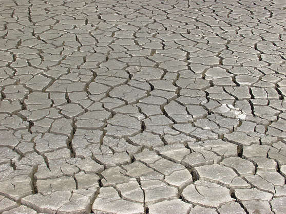 dirt earth cracked cracks