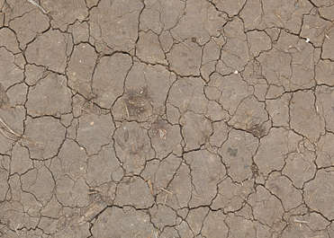 earth soil sand cracked cracks dry desert lake crackles