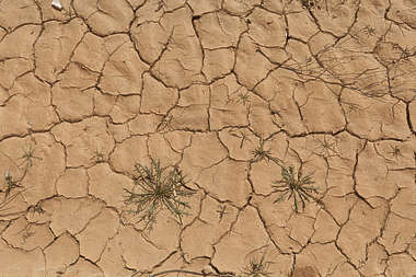 ground soil cracked earth spain