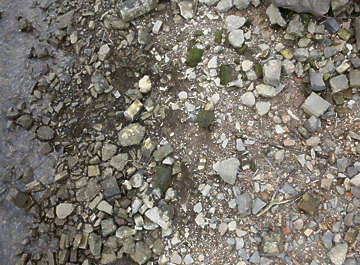 ground terrain sand mud river bed muddy riverbed rocks rock pebbles river side riverside