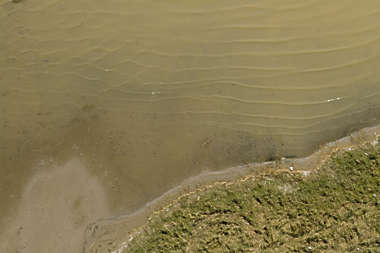 aerial water grass sand shore shoreline