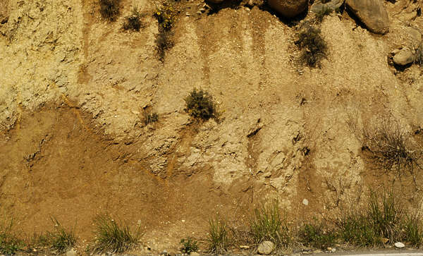 cliff sand earth rough