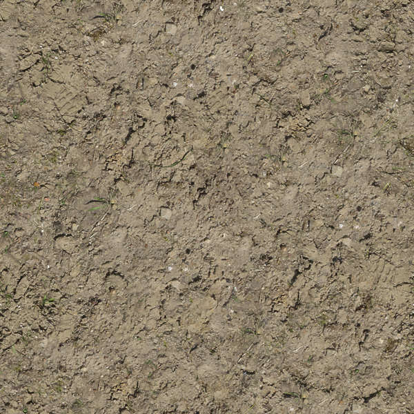 Soilsand0156 Free Background Texture Sand Dirt Earth