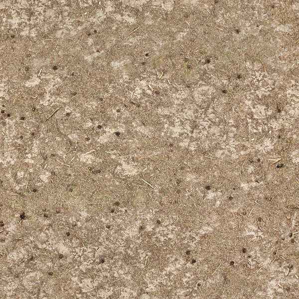 Soilsand0118 Free Background Texture Ground Path Sand
