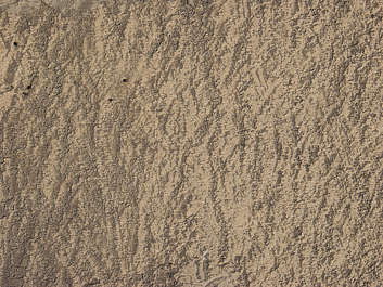 sand dirt earth