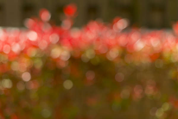 texture abstract bokeh background