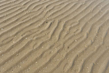 beach sand soil abstract background