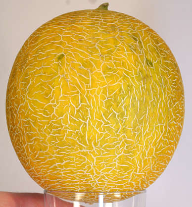 fruit food foodstuff melon