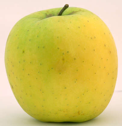 fruit apple golden delicious food foodstuff