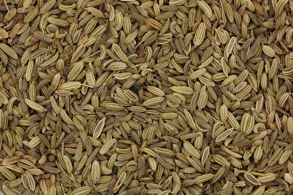 grain graines spice spices caraway meridian fennel