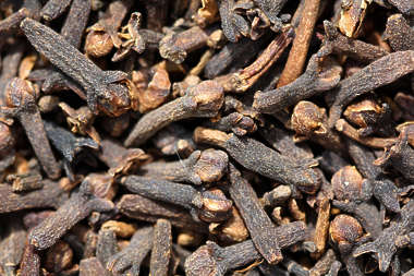 spice spices Clove