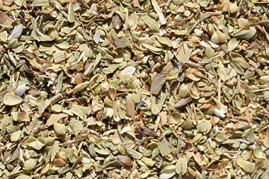 spice spices Oregano