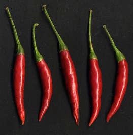 red pepper peppers