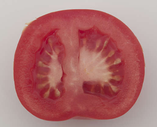 food foodstuff vegetable tomato