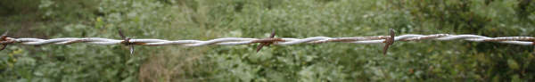 barbed wire metal