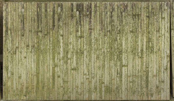 bamboo mossy fence barrier old weathered