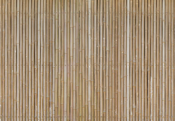 Brick And Bamboo Facade