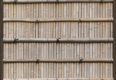 bamboo fence japan