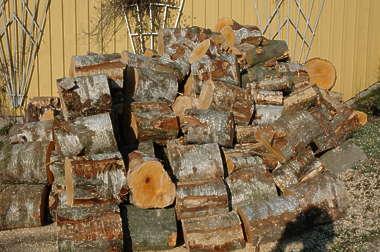 wood ends logs firewood log trunk