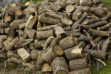 firewood wood stack heap
