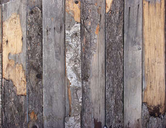 wood planks dirty bark rough bare