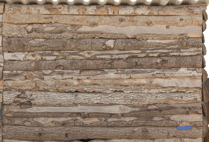 Woodlogs0048 Free Background Texture Wood Bare Logs