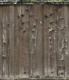 japan wood planks japanese bare