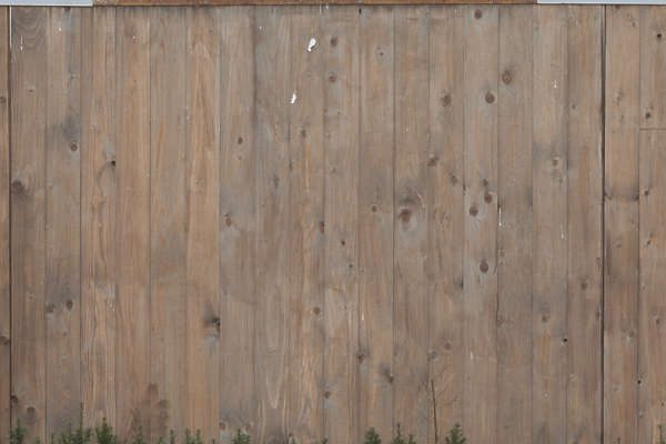 wood planks fence bare
