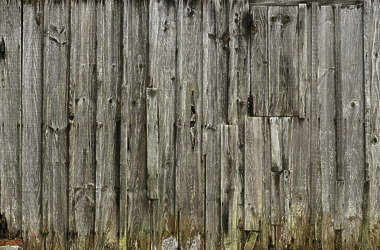 wood planks old siding mossy