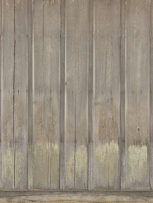 japan wood planks siding japanese bare mossy dirty