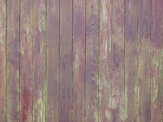 wood planks dirty moss stains painted siding