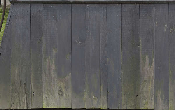 wood planks old mossy dirty siding